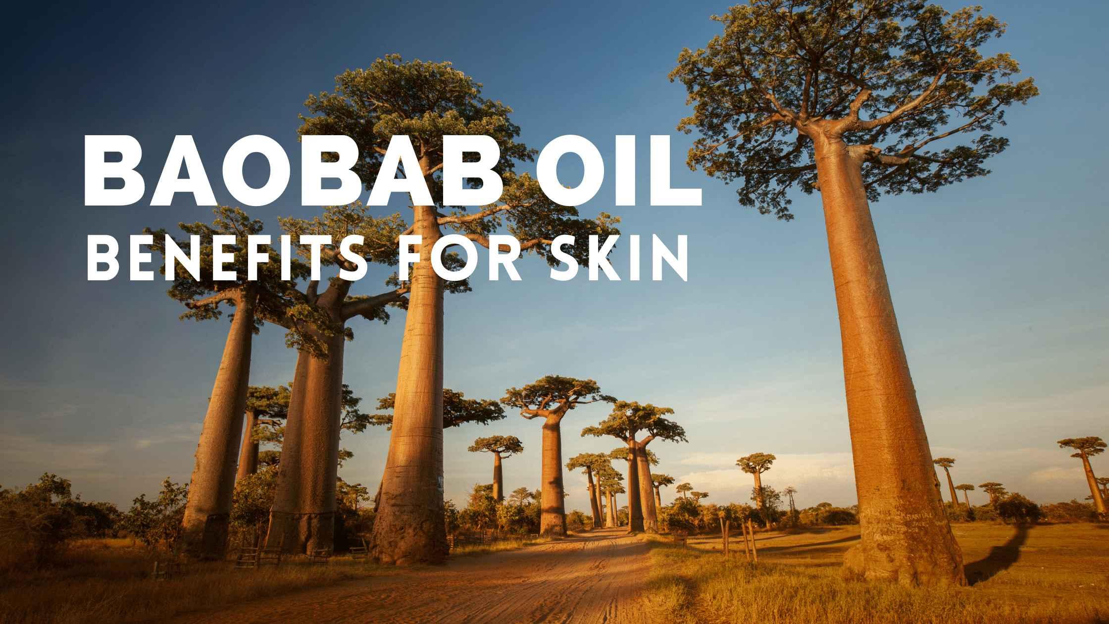 Baobab Oil Benefits for Skin