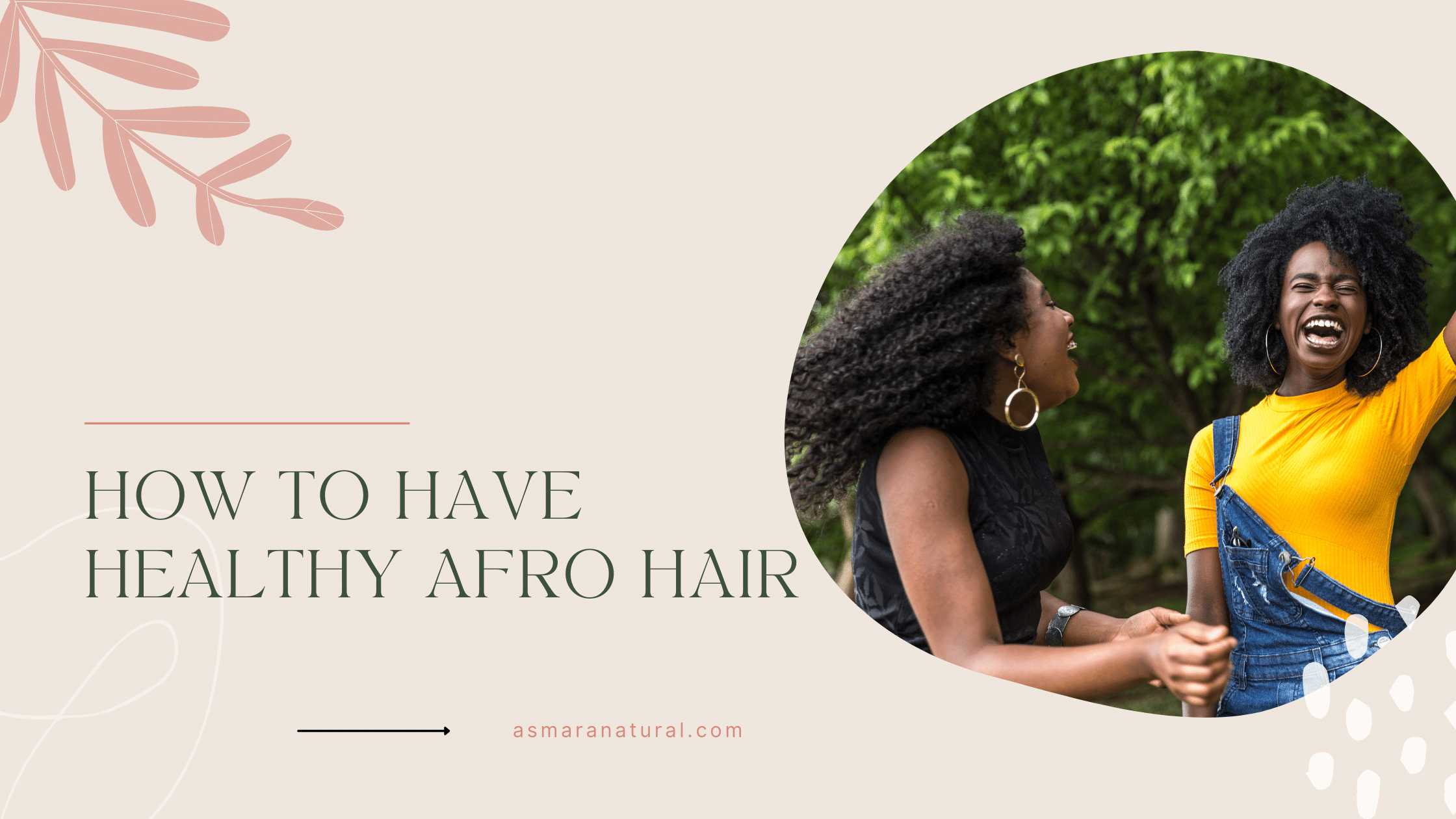 healthy afro hair